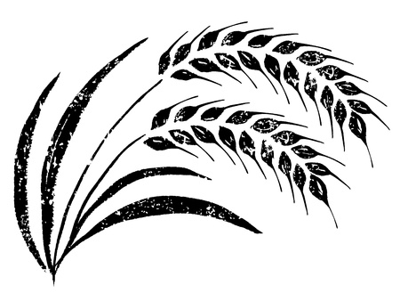 wheat illustration: Hand-drawn rice