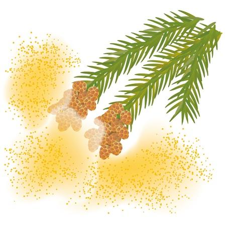 itchy: Pollen_Japan cedar