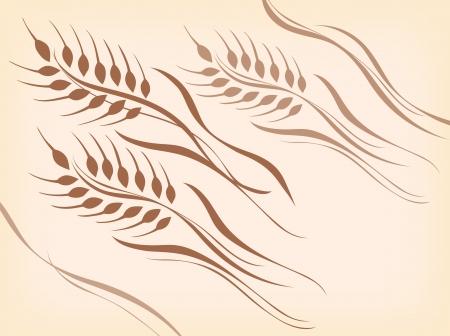 美しい曲線の小麦