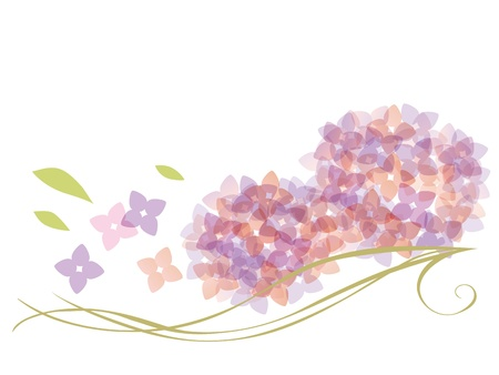 A beautiful curve and a hydrangea   Vector
