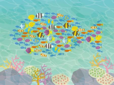 美しい魚と海のイラスト