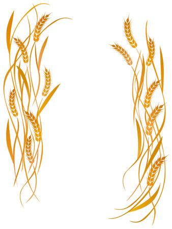 小麦の白い背景のポスター  イラスト・ベクター素材
