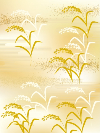 rice plant: The illustration of Japanese style rice