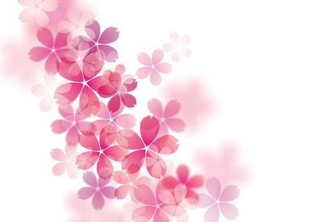 아름다운 벚꽃 사쿠라의 그림 일러스트
