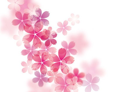Illustration der schönen Kirschbaum Kirschblüte Standard-Bild - 26394351