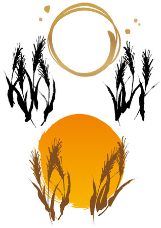 rice plant: The illustration of wheat