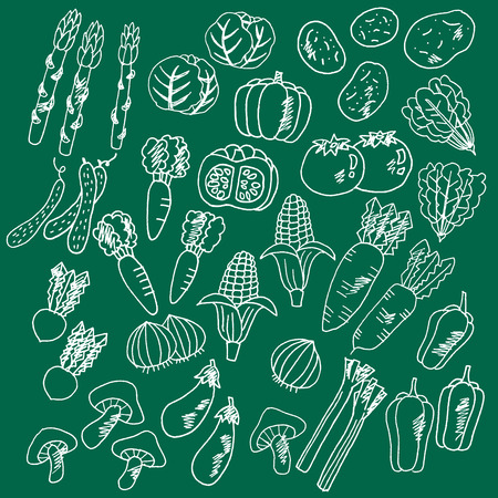 potato leaves: Illustrations of vegetables