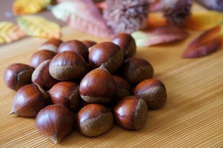 marron: Photo of chestnut Stock Photo