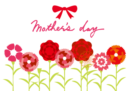 carnation: Carnation of Mother  's Day
