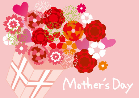 mother s day: Carnation of Mother  's Day