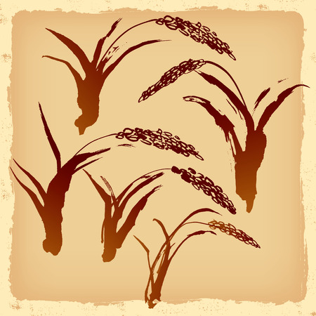 rice plant: The bay of illustrations of handwriting.