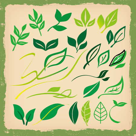 with sets of elements: Leaves of Stock