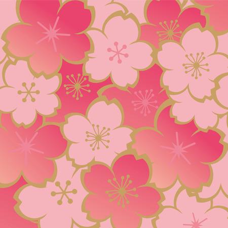 cerezos en flor: Beautiful cherry blossoms of Japan