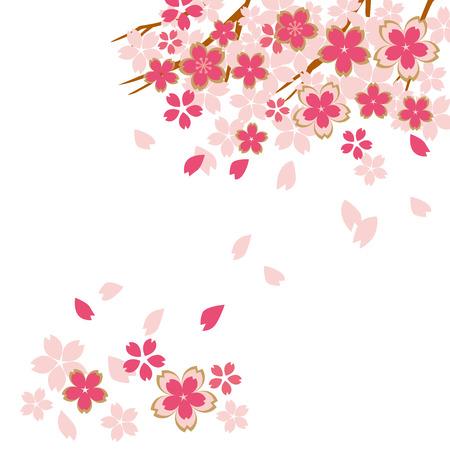 Prachtige kersenbloesems van Japan Stock Illustratie