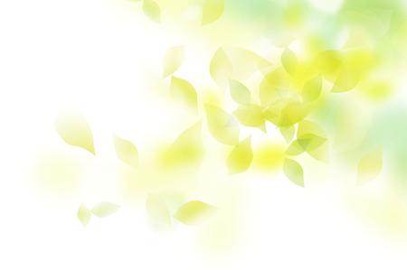 Vriendelijke verse groene Stockfoto - 53297824