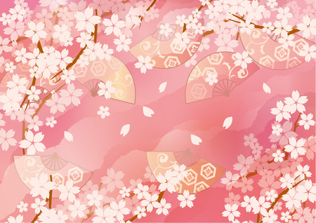Picture of beautiful cherry blossoms of Japan
