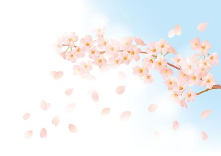 gently: Gently cute cherry illustration