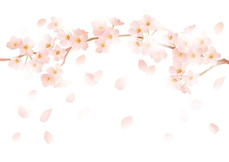 new plant: Gently cute cherry illustration