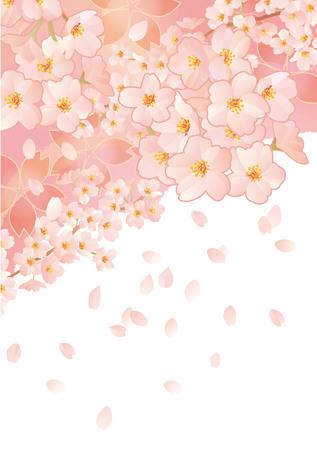 new plant: Beautiful Japanese cherry tree Illustration