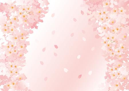 graduate asian: Beautiful Japanese cherry tree Illustration