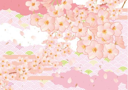 new plant: A beautiful cherry tree illustration in JapanA beautiful cherry tree illustration in Japan