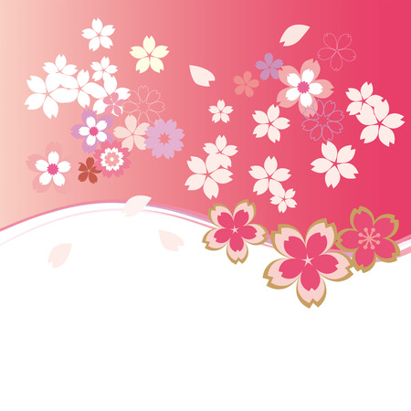 cherry blossoms: A beautiful cherry blossom illustration Illustration