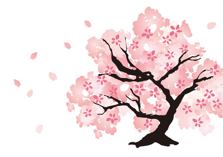Eine schöne Kirschbaum Illustration Standard-Bild - 73419071