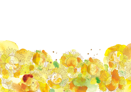 A beautiful illustration of sunflower