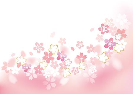 Gentle sakura blossoms illustration
