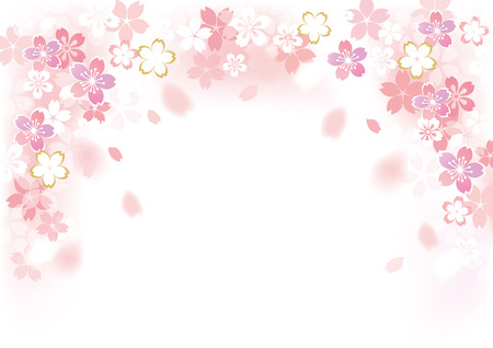 sakura flores ornamentales ilustración