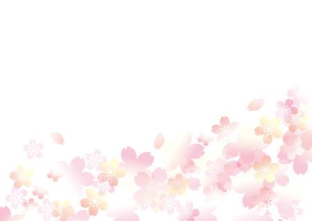 Es ist ein schöner Kirschbaum in Japan Standard-Bild - 93441529