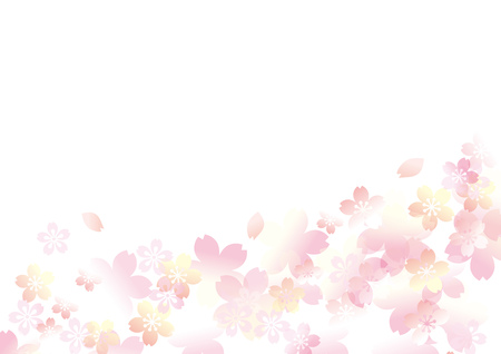 Es un hermoso cerezo en Japón. Foto de archivo - 93441529
