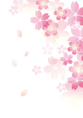 Gentle sakura blossoms illustration.
