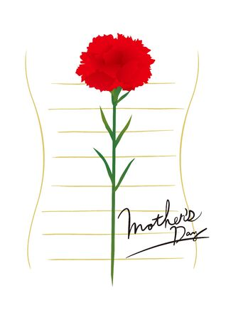 Carnation flower for Mother's Day Card illustration.