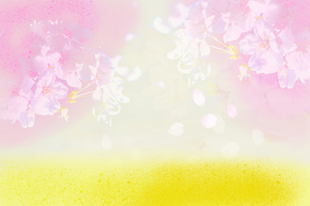 Cherry blossoms and rape blossoms in soft colors