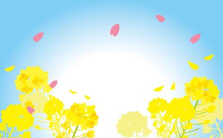 Illustration of rape flower and cherry tree in Japan 일러스트