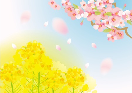 Illustration of rape flower and cherry tree in Japan (New life support fair is written)