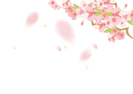 Illustration of beautiful sky and cherry tree in Japan