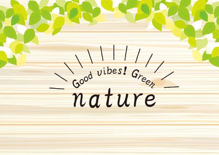 Natural ivy illustration Vektorové ilustrace