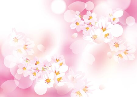 It is an illustration of cherry blossoms gently dancing