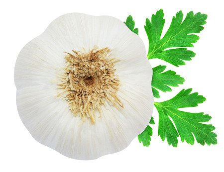 Head of garlic and sprig of fresh green parsley isolated on white background photo