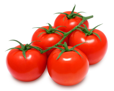 tomato: Branch of fresh red tomatoes on isolated white backround