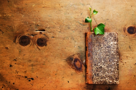 Old wood table with book and plant sprout in rustic vintage style. Top view. Retro concept background. For poster and design element. Stock Photo