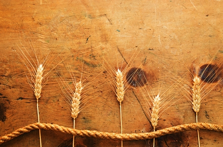 wheat: Old wood table with spikelets of wheat and rope makes a frame for a text in rustic vintage style. Top view. Retro concept background. For poster, menu and recipe.