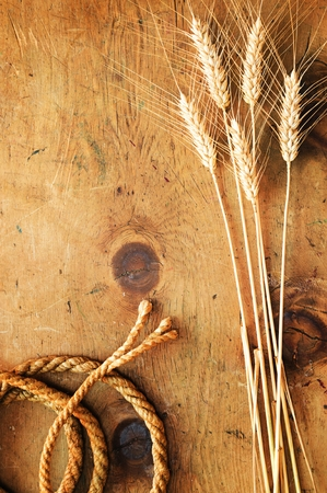 text space: Old wood table with spikelets of wheat and rope makes a frame for a text in rustic vintage style. Top view. Retro concept background. For poster, menu and recipe.