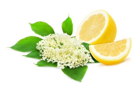 녹색 잎과 흰 배경에 고립 된 레몬의 절반 sambucus의 장식. 시럽을위한 성분. 제품 레이블, 카탈로그 인쇄, 웹 사용을위한 디자인 요소. 스톡 콘텐츠