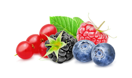 Fresh ripe redcurrant, blackberry, raspberry, blueberry berries with leaf isolated on white background. Design element for product label, catalog print, web use. Stock Photo