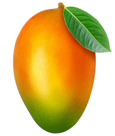 Juicy fresh mango with leaf isolated on a white background. Ripe tropical fruit with antioxidant effect.