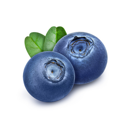 Two fresh blueberries with green leaves isolated on white background. Design element for product label, catalog print, web use.