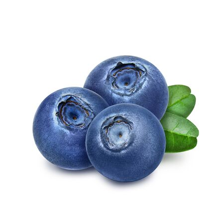 Three fresh blueberries with green leaves isolated on white background. Design element for product label, catalog print, web use.